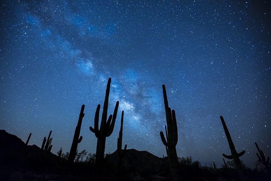 Voyagez jusqu'aux étoiles avec Etoilez-moi !