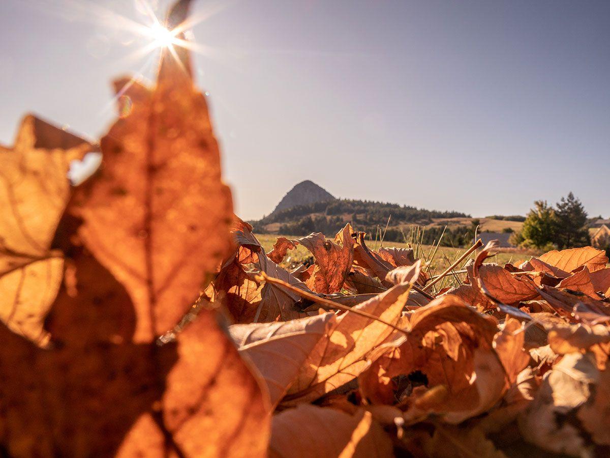 Ardèche : aventure automnale autour du Mont Gerbier de Jonc