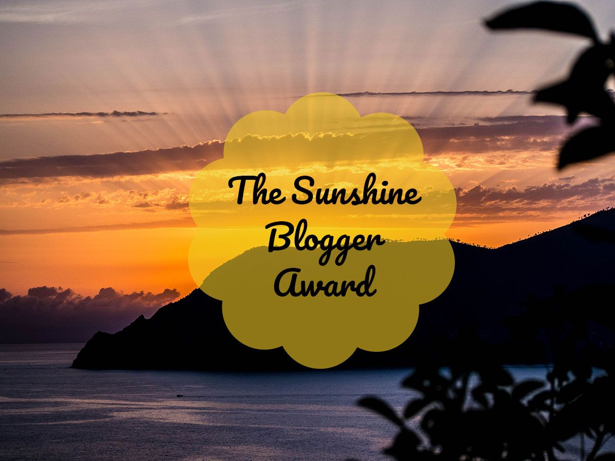 THE SUNSHINE BLOGGER AWARD : les petits secrets des Hiboux