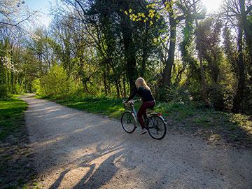 Rêverie le long de la ViaRhôna en Drôme/Ardèche…
